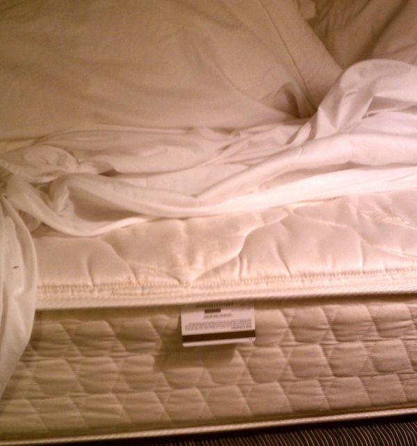 futon mattresses albany ny
