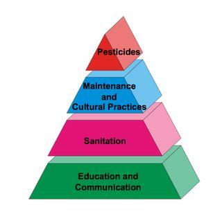 School IPM Pyramid