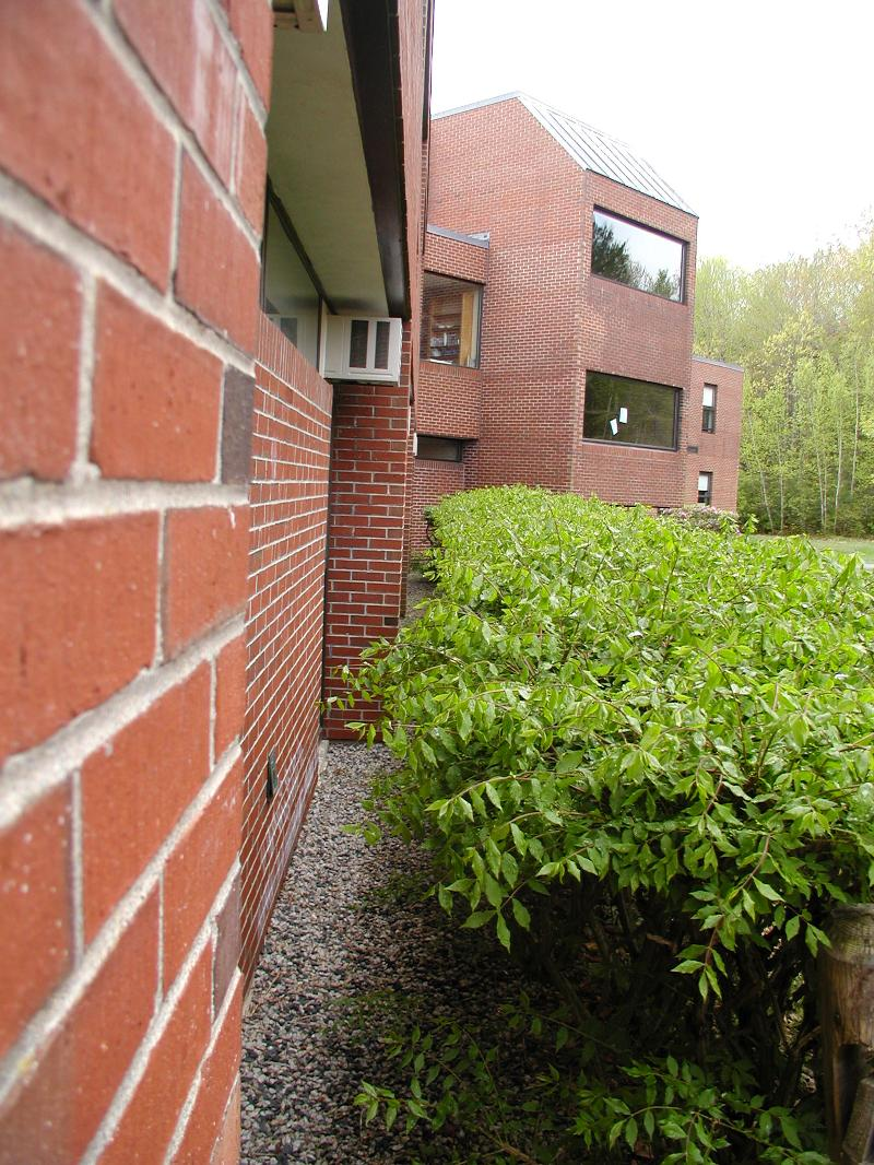 Vegetation grows! Be sure to have trimming vegetation back from buildings on your preventive maintenance schedule