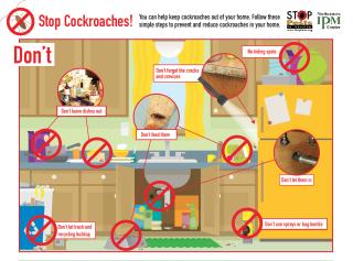 Acreenshorcockroach
